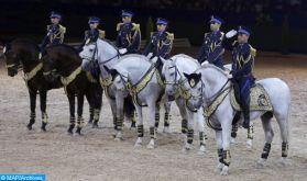 La prestigieuse cavalerie de la DGSN au salon « Cheval passion » d'Avignon